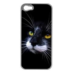 Face Black Cat Apple iPhone 5 Case (Silver)