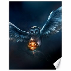 Owl And Fire Ball Canvas 18  x 24