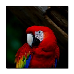 Scarlet Macaw Bird Tile Coasters