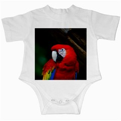 Scarlet Macaw Bird Infant Creepers