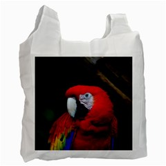 Scarlet Macaw Bird Recycle Bag (Two Side)