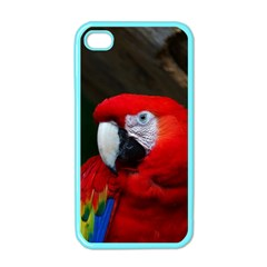 Scarlet Macaw Bird Apple iPhone 4 Case (Color)