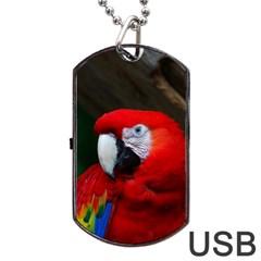 Scarlet Macaw Bird Dog Tag USB Flash (Two Sides)