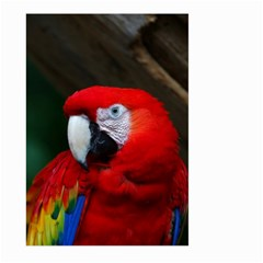 Scarlet Macaw Bird Large Garden Flag (Two Sides)