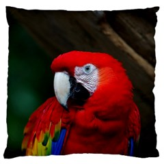 Scarlet Macaw Bird Large Cushion Case (Two Sides)