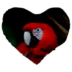 Scarlet Macaw Bird Large 19  Premium Heart Shape Cushions