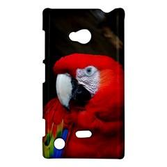 Scarlet Macaw Bird Nokia Lumia 720