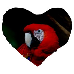 Scarlet Macaw Bird Large 19  Premium Flano Heart Shape Cushions