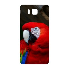 Scarlet Macaw Bird Samsung Galaxy Alpha Hardshell Back Case