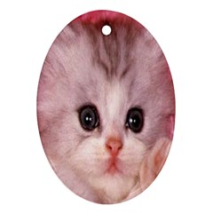 Cat Animal Kitten Pet Oval Ornament (Two Sides)