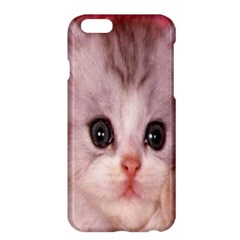 Cat Animal Kitten Pet Apple iPhone 6 Plus/6S Plus Hardshell Case