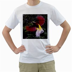 Cendrawasih Beautiful Bird Of Paradise Men s T-Shirt (White) (Two Sided)