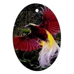 Cendrawasih Beautiful Bird Of Paradise Oval Ornament (Two Sides)