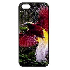 Cendrawasih Beautiful Bird Of Paradise Apple iPhone 5 Seamless Case (Black)