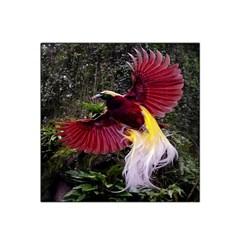 Cendrawasih Beautiful Bird Of Paradise Satin Bandana Scarf