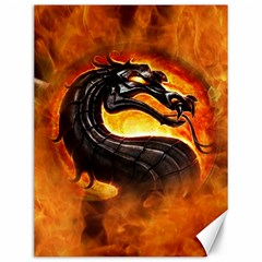 Dragon And Fire Canvas 12  x 16