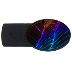 Cracked Out Broken Glass USB Flash Drive Oval (2 GB)