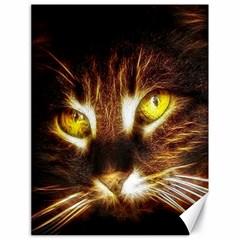 Cat Face Canvas 18  x 24