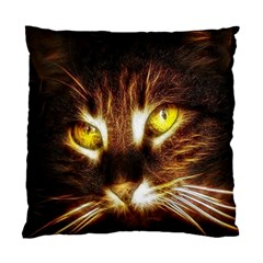 Cat Face Standard Cushion Case (Two Sides)