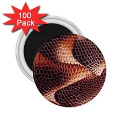 Snake Python Skin Pattern 2.25  Magnets (100 pack)