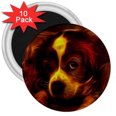 Cute 3d Dog 3  Magnets (10 pack)