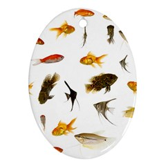 Goldfish Ornament (Oval)