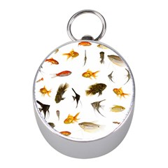 Goldfish Mini Silver Compasses