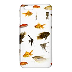 Goldfish iPhone 6/6S TPU Case