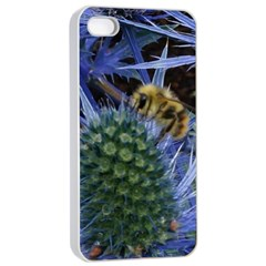 Chihuly Garden Bumble Apple iPhone 4/4s Seamless Case (White)