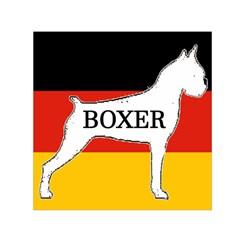 Boxer Name Silo On Flag White Small Satin Scarf (Square)