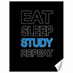Eat sleep study repeat Canvas 18  x 24