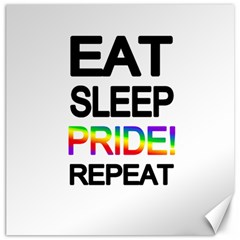 Eat sleep pride repeat Canvas 20  x 20
