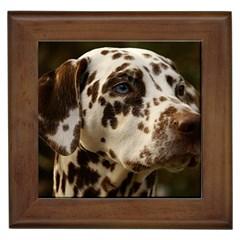 Dalmatian Liver Framed Tiles