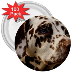 Dalmatian Liver 3  Buttons (100 pack)