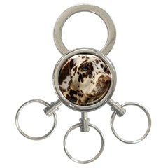 Dalmatian Liver 3-Ring Key Chains