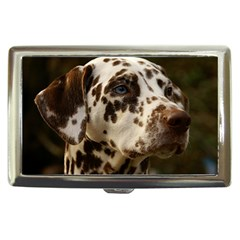Dalmatian Liver Cigarette Money Cases