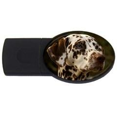 Dalmatian Liver USB Flash Drive Oval (2 GB)