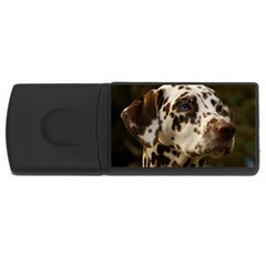Dalmatian Liver USB Flash Drive Rectangular (1 GB)