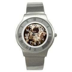 Dalmatian Liver Stainless Steel Watch