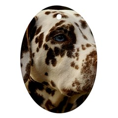 Dalmatian Liver Oval Ornament (Two Sides)