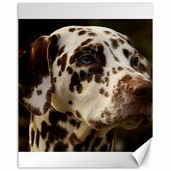 Dalmatian Liver Canvas 16  x 20