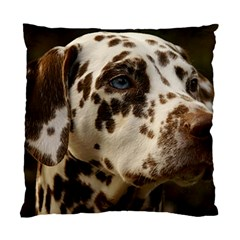 Dalmatian Liver Standard Cushion Case (One Side)