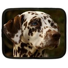Dalmatian Liver Netbook Case (XL)
