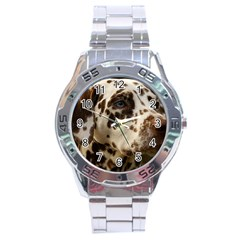 Dalmatian Liver Stainless Steel Analogue Watch