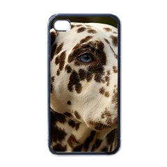 Dalmatian Liver Apple iPhone 4 Case (Black)