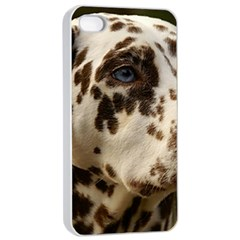 Dalmatian Liver Apple iPhone 4/4s Seamless Case (White)