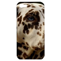 Dalmatian Liver Apple iPhone 5 Hardshell Case