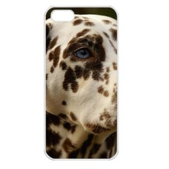 Dalmatian Liver Apple iPhone 5 Seamless Case (White)