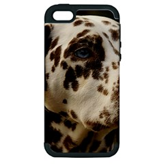 Dalmatian Liver Apple iPhone 5 Hardshell Case (PC+Silicone)