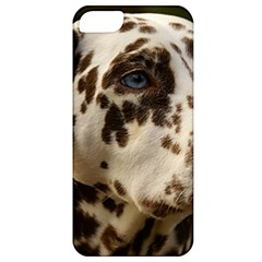 Dalmatian Liver Apple iPhone 5 Classic Hardshell Case